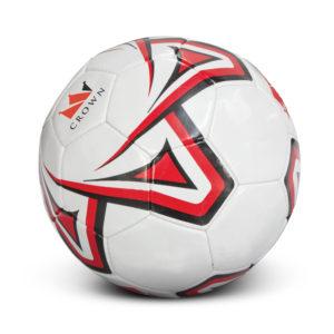 117251 – Soccer Ball Pro