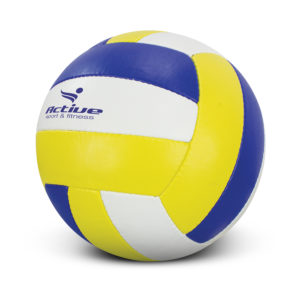 117256 – Volleyball Pro